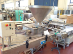 RISCO RS 4003/280 Various filling machine