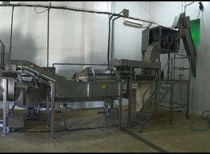 Machine de découpe, lavage et blanchiment de fruits et légumes TJF CENTRI  3000