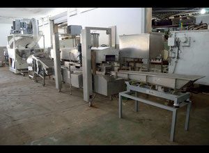 Heat & Control Pellet Frying Line
