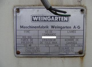 Weingarten HSZ 100 P71006065