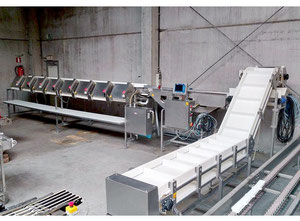 Marel A320 Feeder - scale - sorting machine