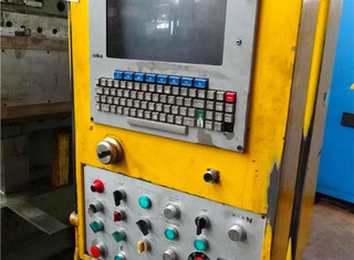 Lazzati Hb2 t P80831106