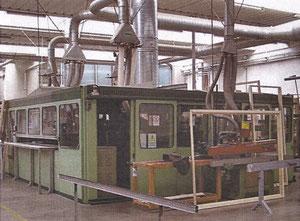 Celaschi TSA Plant