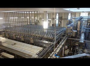 Complete Tetra Pak / Tebel Euro Block Cheese Production Line