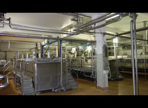 Complete Cheese Dairy Production Line, YOM 2003