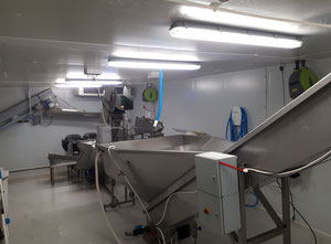 Fresh french fries production line from peeling to bagging