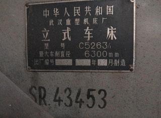 Wuhan C5263/1 P91130018