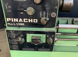 Pinacho L1 P00129020