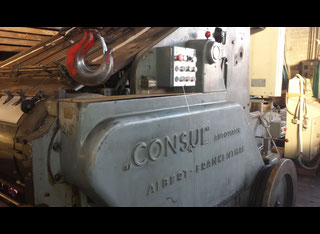 Albert Frankenthal Consul P00326134