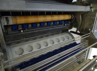 Wp, Kaak Bun roll plant P00617088