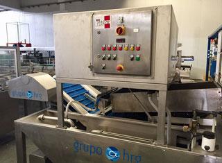 HRG Fish glazing machine P00708033