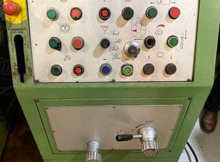 Lodi RTR 800 P00731022