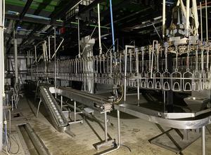 Machine de découpe de viande STORK 8000/h