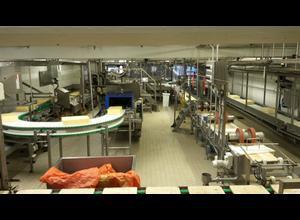 Van Elten/BMA - Molkerei - Käseherstellung-, Käseverpackung- und Käseportioniermaschine