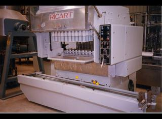 Ricart E P210212029