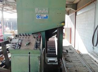 Primultini SE-CEA-IEA P210311021