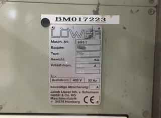 LÖWER DSM 2000 P210323112