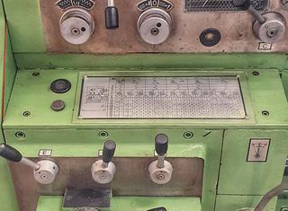 Tarnów TUJ-50 x 3000 P210331101