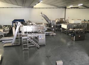 Inemur PV-13-67 Capping machine