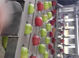 Maszyna do przetwórstwa warzyw lub owoców Turkish Apple cutting machine