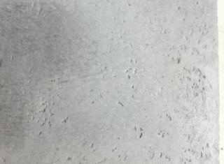 Rigam Balleggi Wetcast P81022170