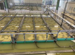 Klokslag Cheese brining system P210709018